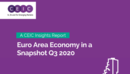Euro Area Economy in a Snapshot Q3 2020 Report