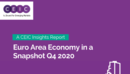 Euro Area Economy in a Snapshot Q4 2020 Report