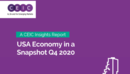 US Economy in a Snapshot Q4 2020 Report
