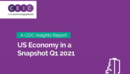 US Economy in a Snapshot Q1 2021 Report