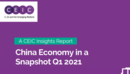 China Economy in a Snapshot Q1 2021 Report