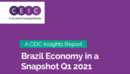 Brazil Economy in a Snapshot Q1 2021 Report