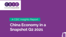 China Economy in a Snapshot Q2 2021 Report