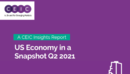 US Economy in a Snapshot Q2 2021 Report