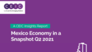 Mexico Economy in a Snapshot Q2 2021 Report
