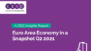Euro Area Economy in a Snapshot Q2 2021 Report
