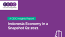 Indonesia Economy in a Snapshot Q2 2021 Report